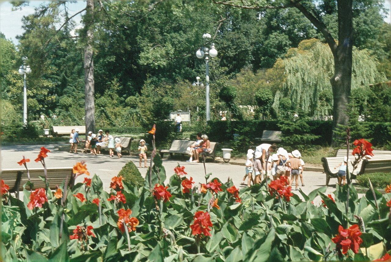 Дети в саду Сочи