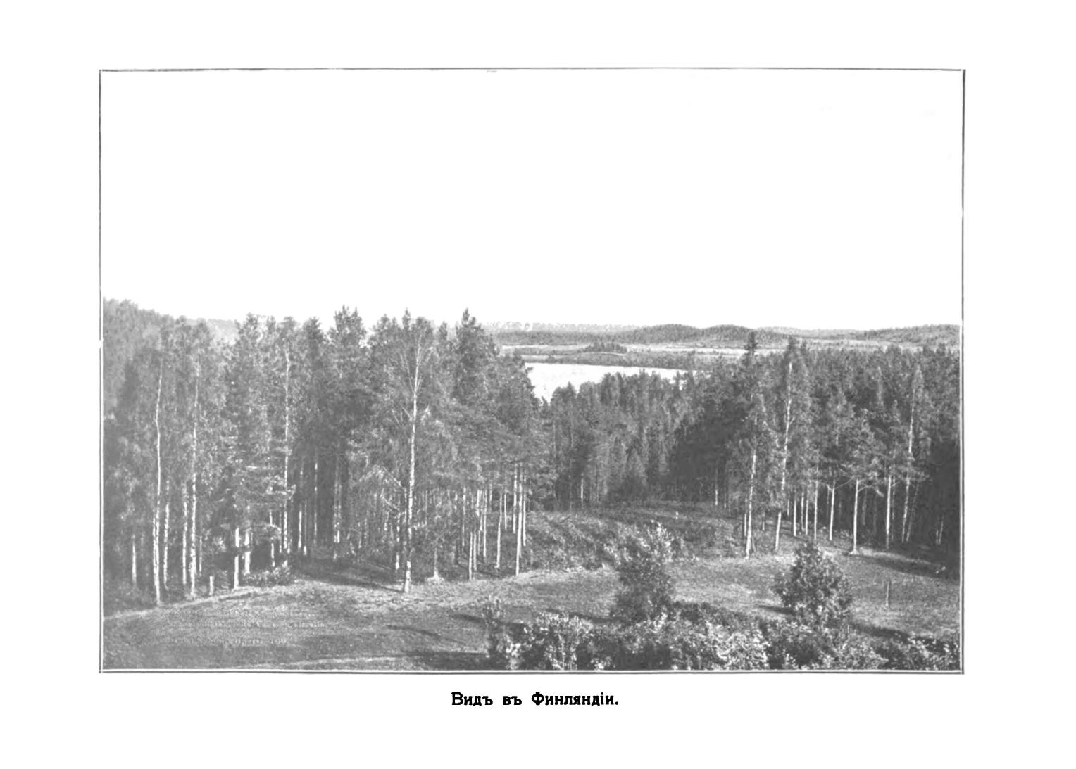 Вид в Финляндии