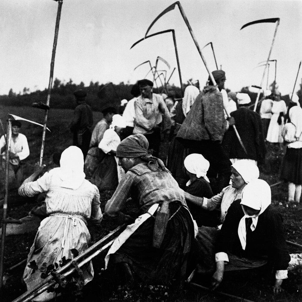 1920. Сбор урожая в русской деревне