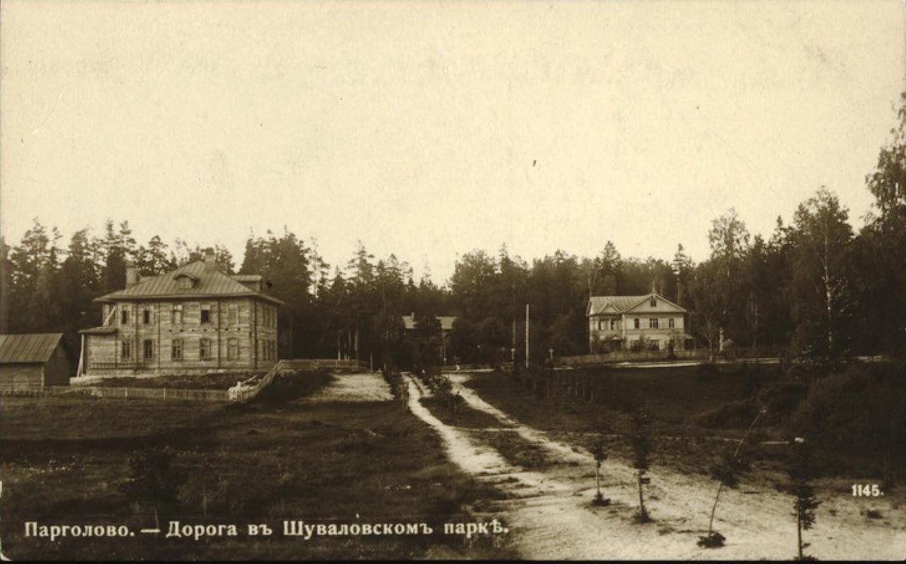 Дорога в Шуваловском парке