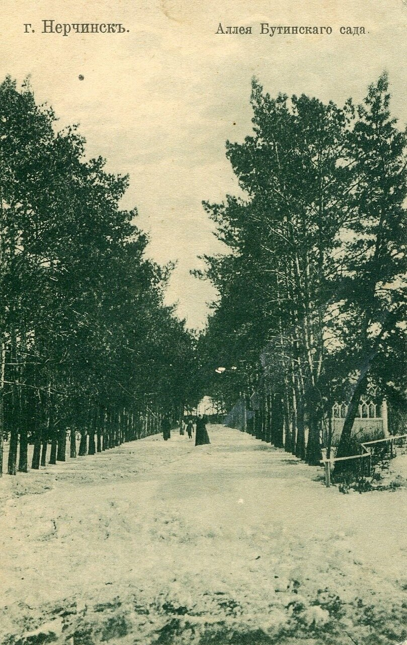 Аллея Бутинского сада