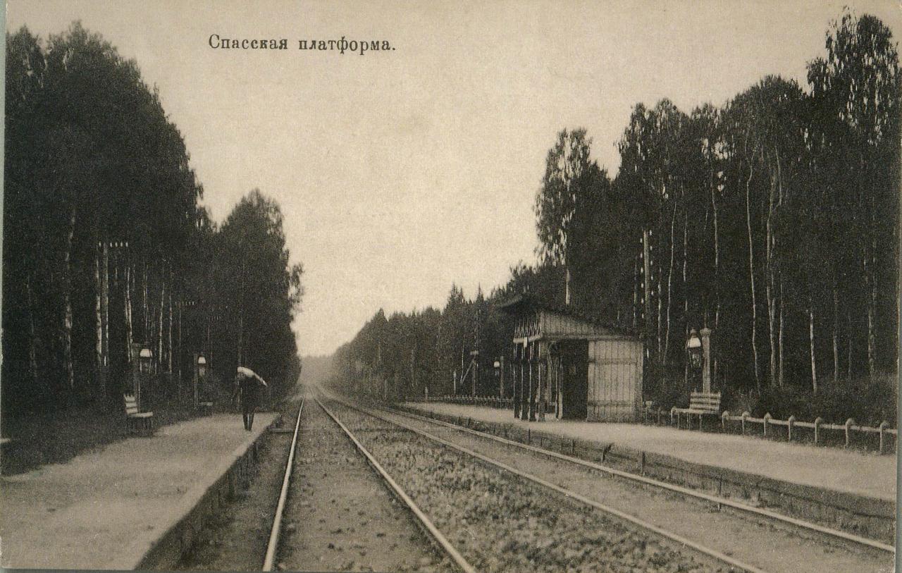 Окрестности Москвы. Спасская платформа
