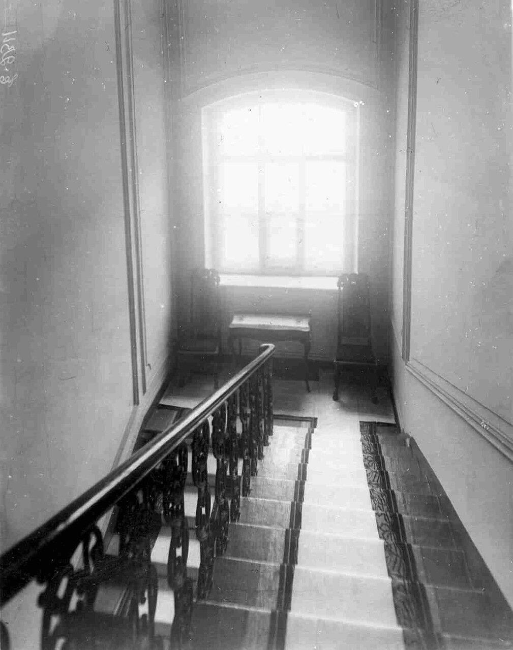 Часть лестницы в квартире барона Икскуля