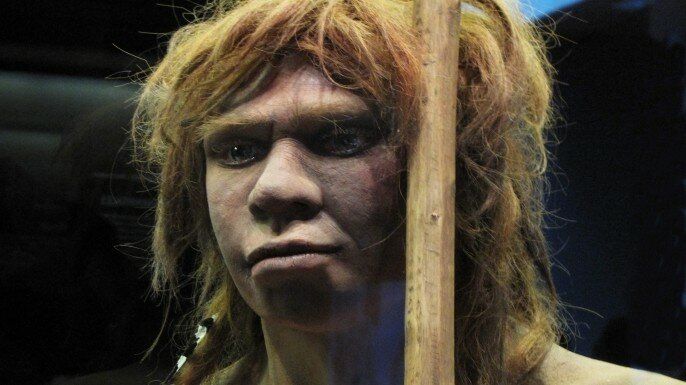 hith-study-suggests-neanderthals-humans-coexisted-for-millenia-498346065-E.jpeg