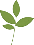 mbennett-youaremyhappy-leaves.png