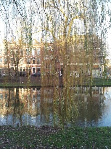 Роттердам, январь 2014