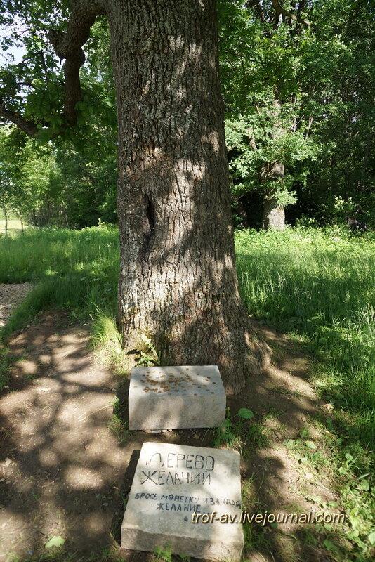 Дерево желаний рядом с памятником 4-й пехотной дивизии