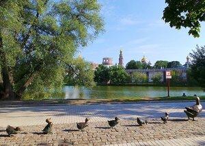 Москва в районе Новодевичьего