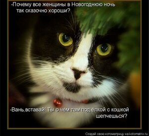 http://img-fotki.yandex.ru/get/9305/194408087.5/0_b3229_6c542da1_M.jpg
