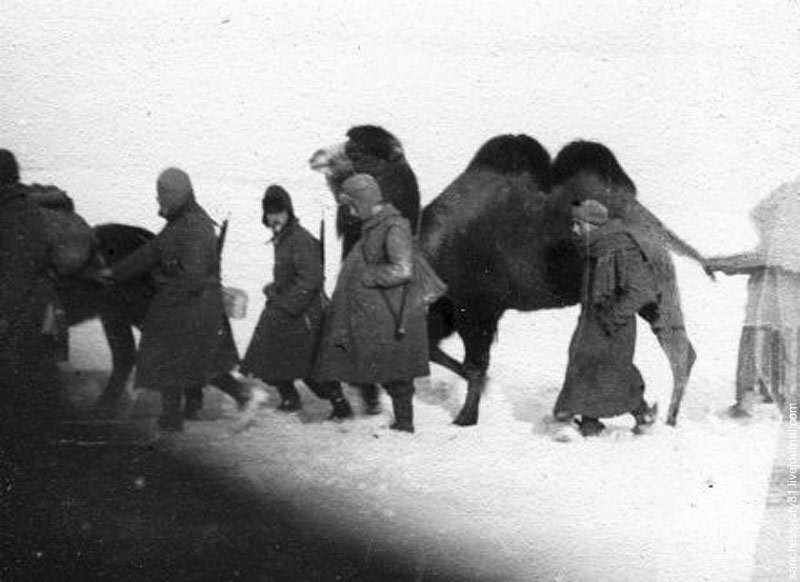 отступление венгерских частей зимой 1943