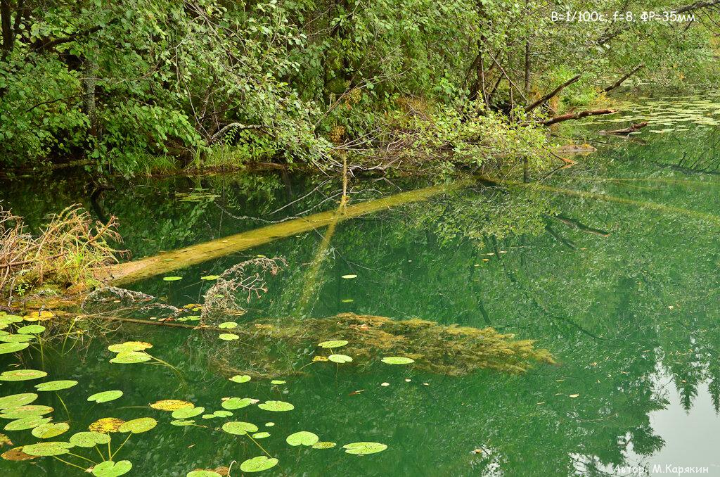 11. Затопленные деревья есть не только в национальном парке Цзючжайгоу (Jiuzhaigou) в Китае. Такая красота есть и на Урале. Озеро Бездонное. Снято на трэвел-зум Сигма 18-250.