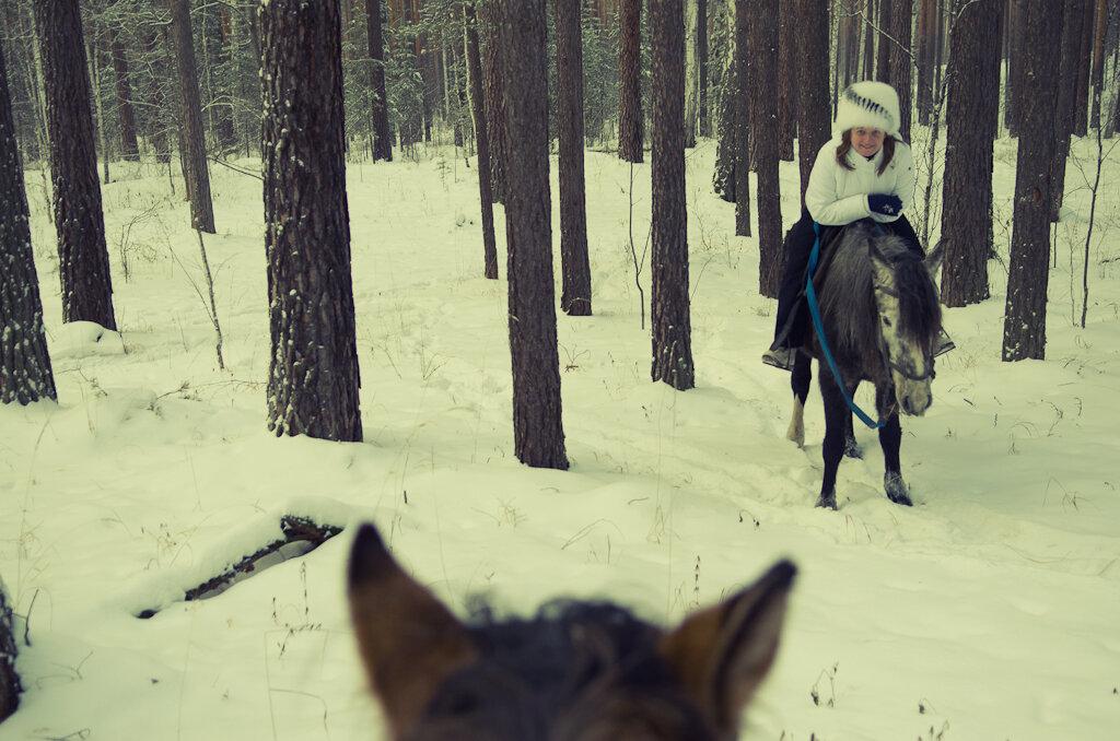 7. Верховая езда в заснеженном лесу. Верхняя Сысерть