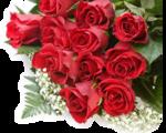 букет-3685_rose_007004.png