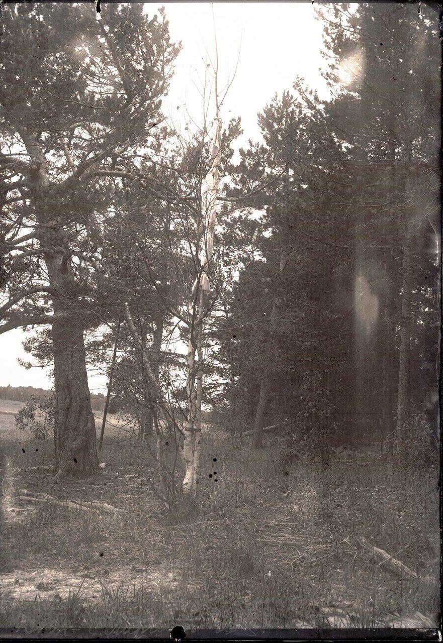 1912. Река Вах. Село Ларьяк