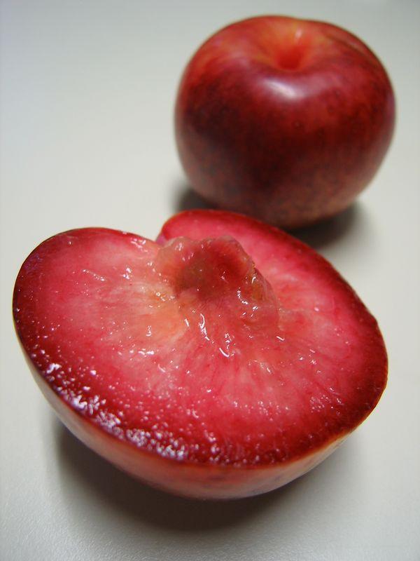 Грейпфрут что за фрукт гибрид