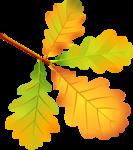 Осень125
