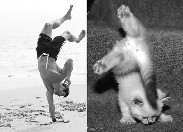 Выбор спорта, мои сомнения))))