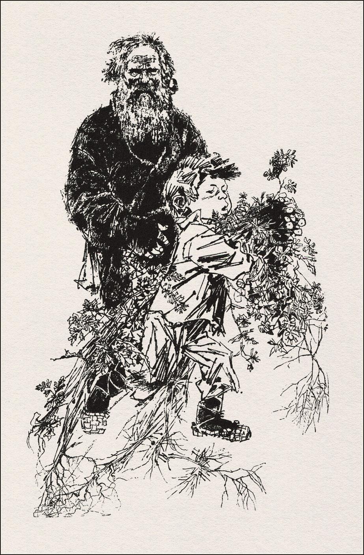 Геннадий Новожилов, Платонов, Цветок на земле