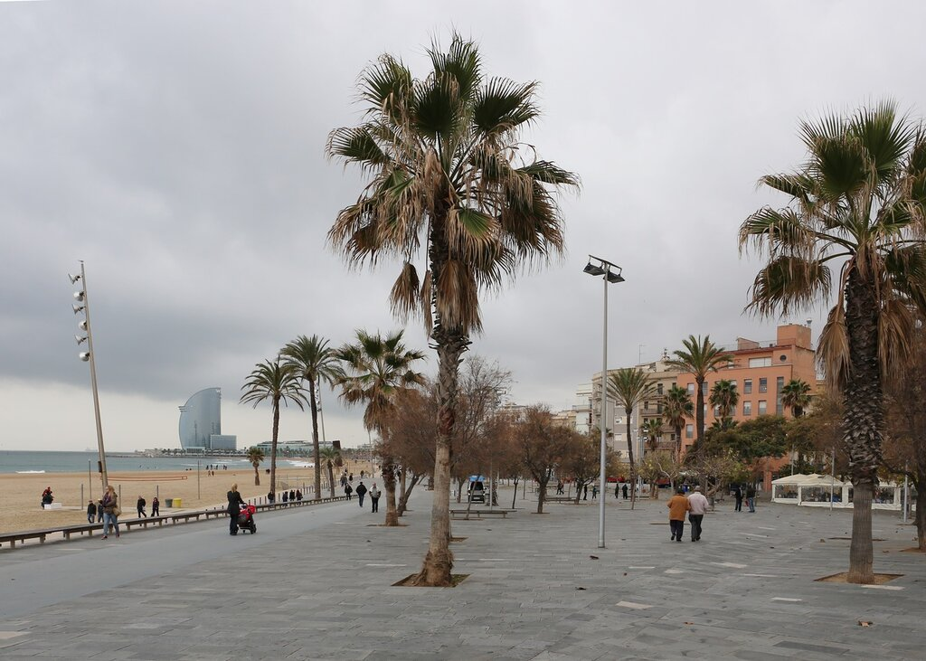 Барселона. Набережная Барселонеты.