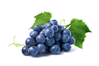 Экстракт винограда