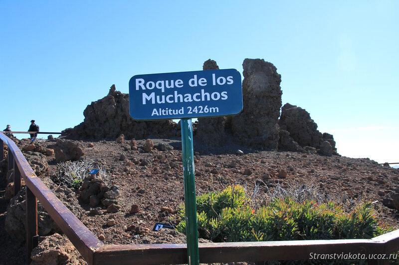 Ла Пальма, Роке де Мучачос