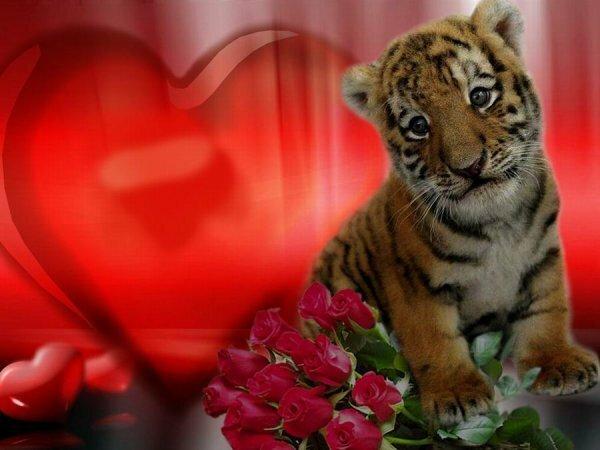 http://img-fotki.yandex.ru/get/9306/97761520.ef/0_8024a_b74a42bb_XL.jpg