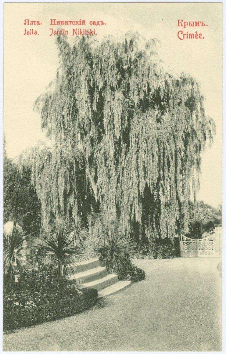Императорский Никитский сад.