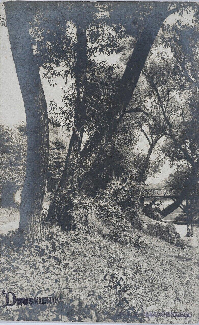 Без подписи. 1908