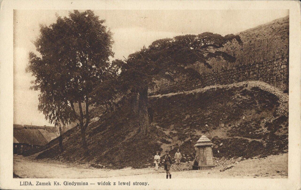 Замок Гедиминаса. Вид с левой стороны