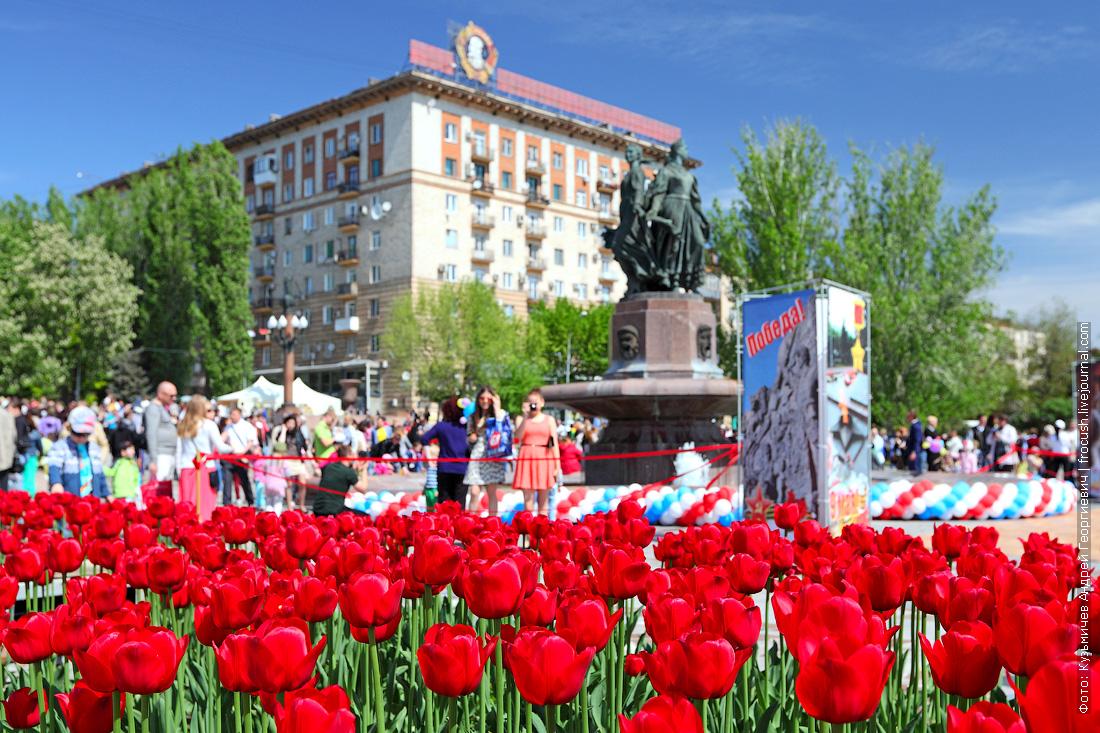 Волгоград 9 мая День Победы фонтан Искусство красные тюльпаны