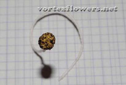 Как сделать розу из атласной ткани.