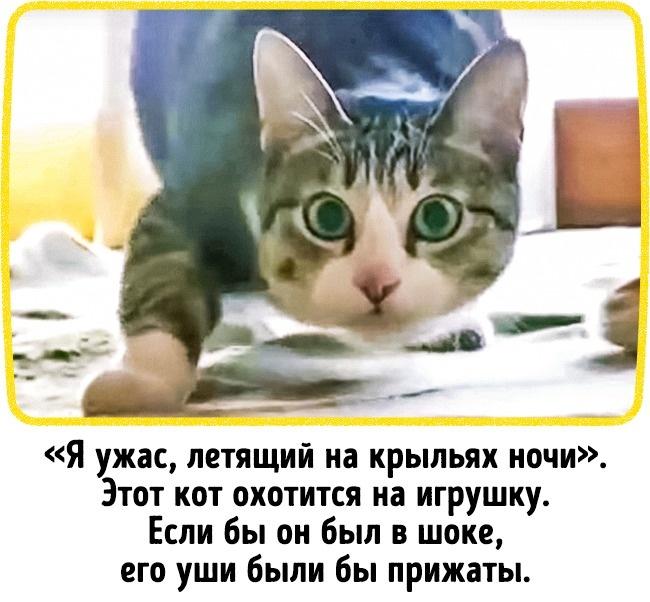 © YouTube  © YouTube   2.