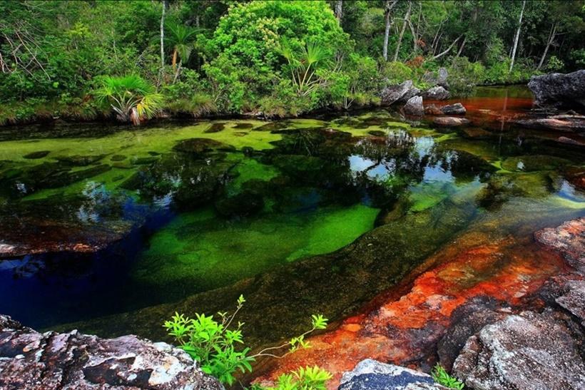 Удивительные природные явления, от которых захватывает дух