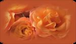 imagem floral net.png