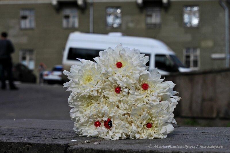 'Алые паруса' порадовали молодожёнов, Саратов, 07 сентября 2013 года