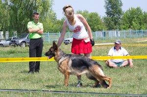 http://img-fotki.yandex.ru/get/9308/195910437.2f/0_f94c5_cfcf710e_M.jpg