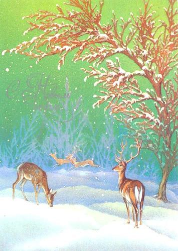 С Новым годом! Грациозные олени