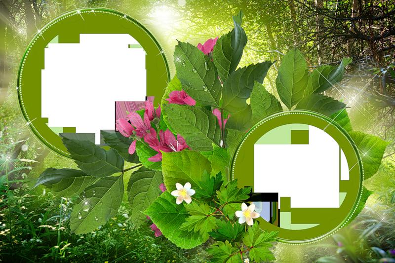 http://img-fotki.yandex.ru/get/9308/97761520.4b2/0_8f1c2_3739bc0a_orig.png