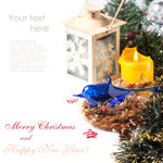 Christmas card with blue bird