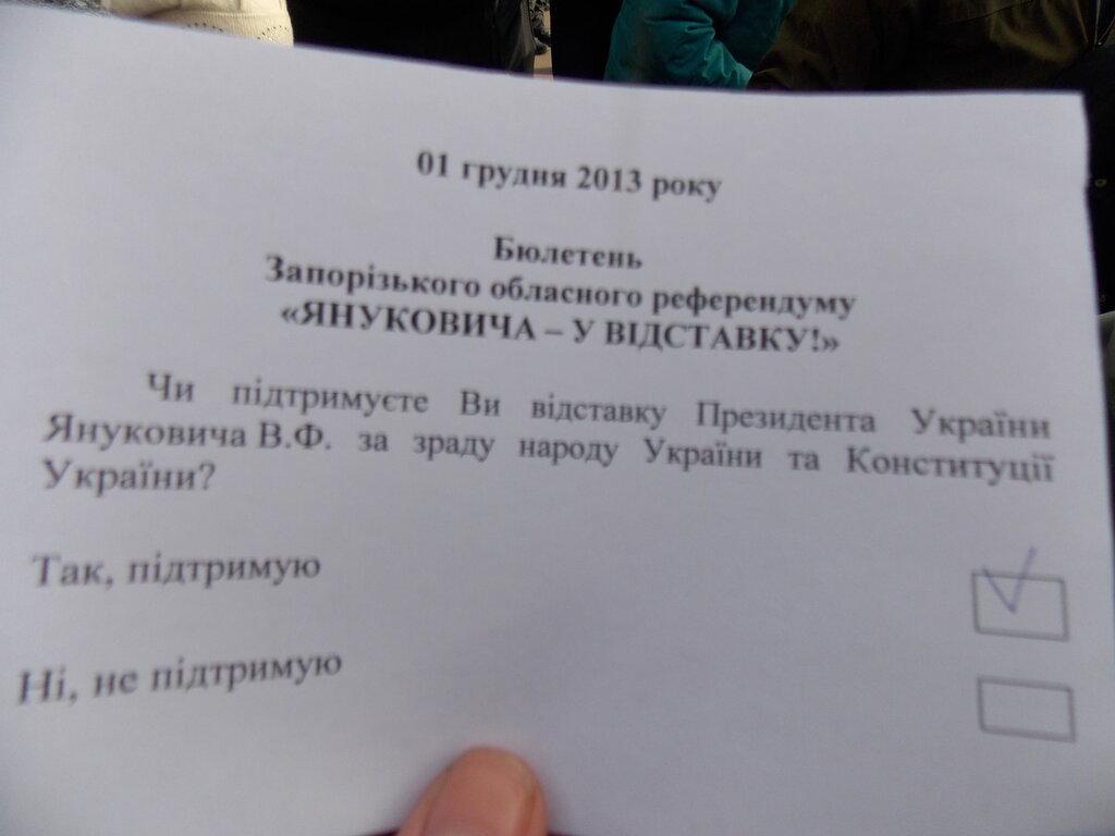 Запорожский Евромайдан: «Банду геть!», «Ода чму» и галочка против Януковича (ФОТОРЕПОРТАЖ), фото-4
