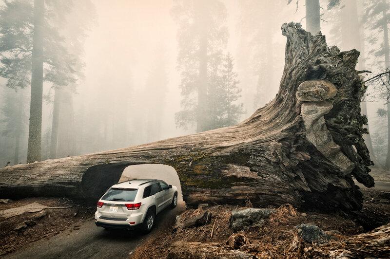 Национальный парк в Калифорнии