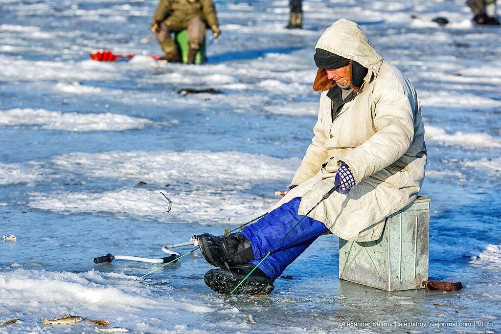 подкормка для рыбалки своими руками видео