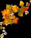 Осень63