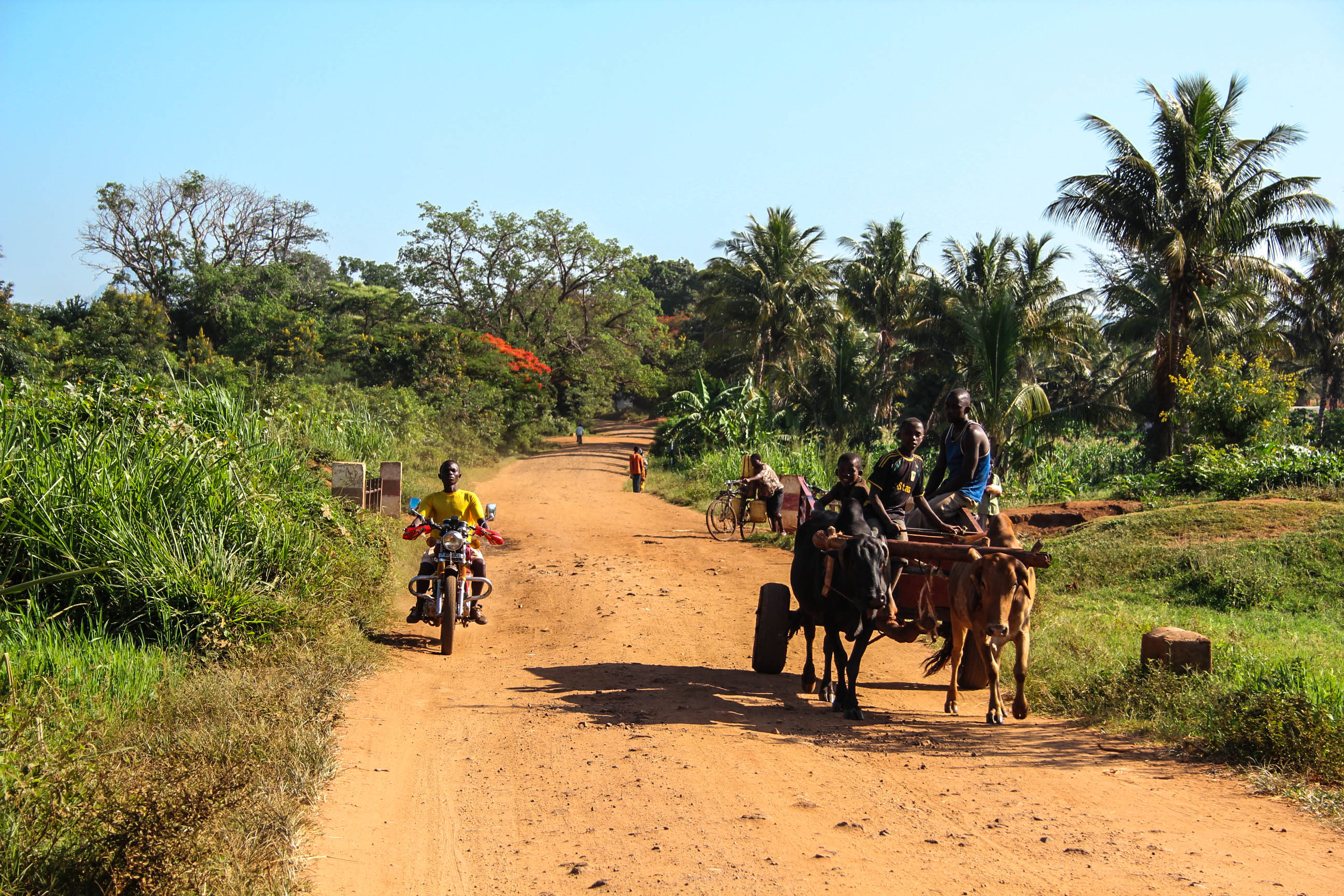 Африка. Часть XVIII - Велосипедная