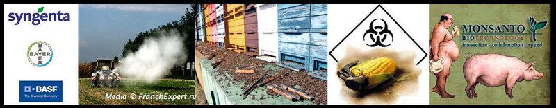 Убийцы пчел: Syngenta AG, Bayer AG и BASF SE