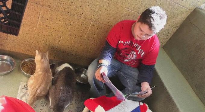 Американские дети читают книжки для животных