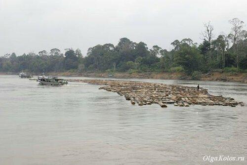 Сплав леса по реке Махакам