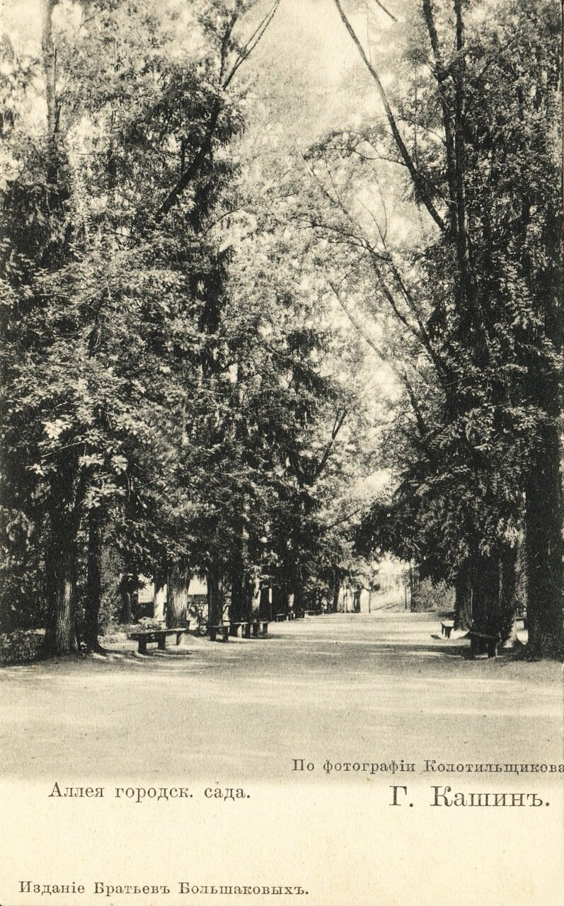 Аллея городского сада