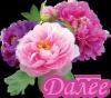 http://img-fotki.yandex.ru/get/9310/164407345.25/0_b1011_4cd2f119_S.png