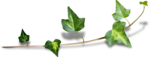 priss_laprimavera_ivy2_sh.png